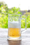 Πίντα της μπύρας Στοκ Φωτογραφίες