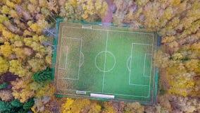 Πίσσα ποδοσφαίρου που περιβάλλεται από το κίτρινο δάσος φθινοπώρου απόθεμα βίντεο