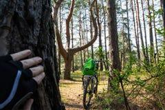 Πίσω άποψη ενός ποδηλάτου που στέκεται στο δάσος με ένα σακίδιο πλάτης σε το Στοκ Φωτογραφία