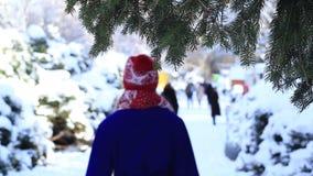 Πίσω άποψη της γυναίκας strolling στο χειμερινό πάρκο φιλμ μικρού μήκους