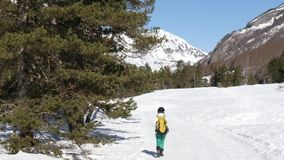 Πίσω άποψη του περπατήματος γυναικών οδοιπόρων στο χιόνι απόθεμα βίντεο