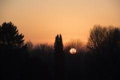 πίσω από τα δέντρα ηλιοβασι Στοκ Εικόνα