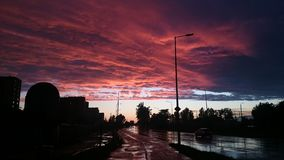 πίσω από τα μόνιμα δέντρα δύο θερινού ηλιοβασιλέματος πεύκων στοκ φωτογραφίες με δικαίωμα ελεύθερης χρήσης