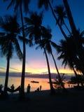 πίσω από τα μόνιμα δέντρα δύο θερινού ηλιοβασιλέματος πεύκων στοκ εικόνες με δικαίωμα ελεύθερης χρήσης