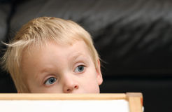 πίσω από τον πίνακα αγοριών Στοκ εικόνες με δικαίωμα ελεύθερης χρήσης