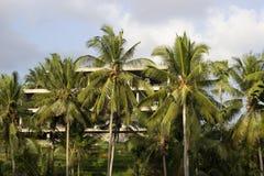 Πίσω από τους φοίνικες ένα νέο ξενοδοχείο χτίζεται στοκ φωτογραφίες