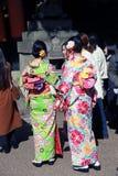 Πίσω από του ιαπωνικού κοριτσιού δύο στο φόρεμα κιμονό στη λάρνακα στην Ιαπωνία Στοκ Εικόνα
