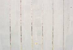 πίσω από το λευκό φραγών κε& Στοκ Φωτογραφία