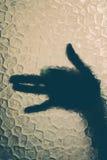 πίσω από το χέρι γυαλιού Στοκ εικόνες με δικαίωμα ελεύθερης χρήσης