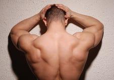 πίσω αρσενικός μυϊκός Στοκ φωτογραφία με δικαίωμα ελεύθερης χρήσης