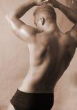 πίσω αρσενικό στοκ εικόνα με δικαίωμα ελεύθερης χρήσης