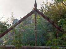 Πίσω κήπων πράσινη ανάπτυξη πρασινάδων λεπτομέρειας σπιτιών στενή επάνω Στοκ Εικόνα