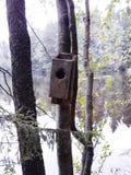 πίσω πουλιών μπλε κόκκινη αμερικανική άσπρη αυλή σπιτιών χρώματος κρεμώντας Στοκ εικόνα με δικαίωμα ελεύθερης χρήσης