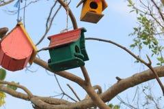 πίσω πουλιών μπλε κόκκινη αμερικανική άσπρη αυλή σπιτιών χρώματος κρεμώντας Στοκ Εικόνες