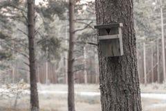 πίσω πουλιών μπλε κόκκινη αμερικανική άσπρη αυλή σπιτιών χρώματος κρεμώντας Στοκ φωτογραφία με δικαίωμα ελεύθερης χρήσης