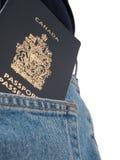 πίσω σειρά τσεπών διαβατηρί& Στοκ φωτογραφία με δικαίωμα ελεύθερης χρήσης