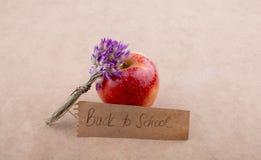 Πίσω στη σχολική εγγραφή με την ανθοδέσμη λουλουδιών Στοκ Εικόνα