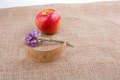 Πίσω στο σχολικό θέμα με το λουλούδι και το μήλο Στοκ Εικόνες