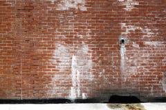 πίσω τοίχος παρόδων τούβλ&omicro Στοκ εικόνες με δικαίωμα ελεύθερης χρήσης
