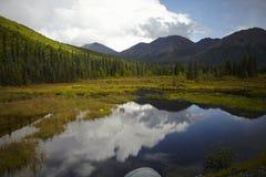 Πίσω χώρα της Αλάσκας Στοκ εικόνες με δικαίωμα ελεύθερης χρήσης