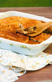 Πίτα λάχανων και κρέατος Στοκ φωτογραφία με δικαίωμα ελεύθερης χρήσης