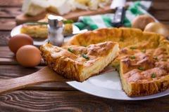 Πίτα λάχανων με το κρεμμύδι Στοκ φωτογραφία με δικαίωμα ελεύθερης χρήσης