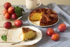 Πίτα ή κέικ δαμάσκηνων με την κανέλα και τη ζάχαρη Κέικ δαμάσκηνων από την εφημερίδα New York Times Εκλεκτική εστίαση Στοκ εικόνα με δικαίωμα ελεύθερης χρήσης