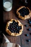 Πίτα βακκινίων Στοκ εικόνα με δικαίωμα ελεύθερης χρήσης