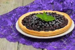 Πίτα βακκινίων Στοκ φωτογραφία με δικαίωμα ελεύθερης χρήσης