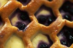 πίτα βακκινίων Στοκ Εικόνες