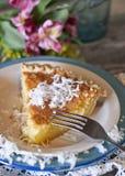 Πίτα βουτυρογάλατος καρύδων Στοκ Φωτογραφία