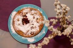 Πίτα γάτα-ιτιών και μήλων Στοκ εικόνες με δικαίωμα ελεύθερης χρήσης