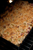Πίτα ζύμης με το ρεβέντι Στοκ φωτογραφία με δικαίωμα ελεύθερης χρήσης