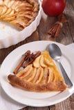 Πίτα και φέτα της Apple Στοκ εικόνες με δικαίωμα ελεύθερης χρήσης
