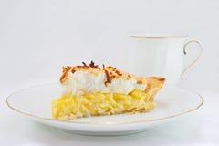 πίτα κρέμας καρύδων Στοκ Εικόνα