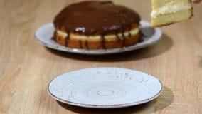 Πίτα κρέμας της Βοστώνης με την τοποθέτηση υαλοπινάκων σοκολάτας Το βάλτε στο κύπελλο ένα κομμάτι της πίτας κρέμας της Βοστώνης απόθεμα βίντεο