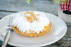 Πίτα κρέμας Στοκ εικόνες με δικαίωμα ελεύθερης χρήσης
