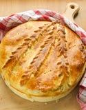 πίτα λάχανων Στοκ Φωτογραφία