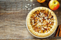 Πίτα μήλων με την κανέλα Στοκ φωτογραφίες με δικαίωμα ελεύθερης χρήσης