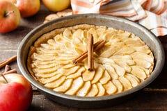 Πίτα μήλων με την κανέλα Στοκ εικόνα με δικαίωμα ελεύθερης χρήσης