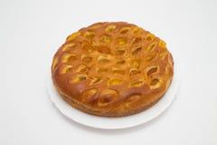 Πίτα με τα ξηρά βερίκοκα στοκ εικόνα με δικαίωμα ελεύθερης χρήσης