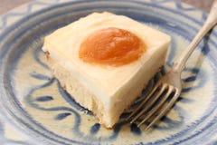 Πίτα με το τυρί και τα βερίκοκα εξοχικών σπιτιών Στοκ εικόνες με δικαίωμα ελεύθερης χρήσης
