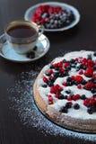 Πίτα μούρων Στοκ εικόνες με δικαίωμα ελεύθερης χρήσης