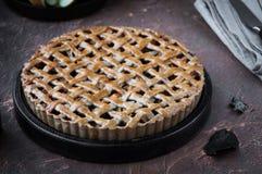 Πίτα της Apple με ένα δικτυωτό πλέγμα της whole-grain ζύμης, σύνολο και στα κομμάτια Στοκ Εικόνες