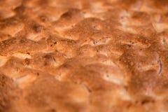 Πίτα της Apple με μια καφετιά τριζάτη κρούστα Στοκ φωτογραφίες με δικαίωμα ελεύθερης χρήσης
