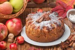 Πίτα της Apple με την κανέλα, καρδάμωμο, γλυκάνισο, κονιοποιημένη ζάχαρη Στοκ εικόνες με δικαίωμα ελεύθερης χρήσης