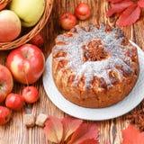 Πίτα της Apple με την κανέλα, καρδάμωμο, γλυκάνισο, κονιοποιημένη ζάχαρη Στοκ εικόνα με δικαίωμα ελεύθερης χρήσης