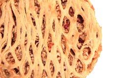 Πίτα της Apple που απομονώνεται Στοκ Εικόνες