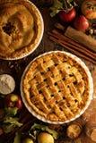 Πίτα της Apple που διακοσμείται με το δικτυωτό πλέγμα Στοκ φωτογραφία με δικαίωμα ελεύθερης χρήσης