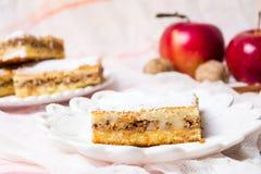 Πίτα της Apple σε ένα πιάτο με τα φρέσκα μήλα Στοκ Εικόνες